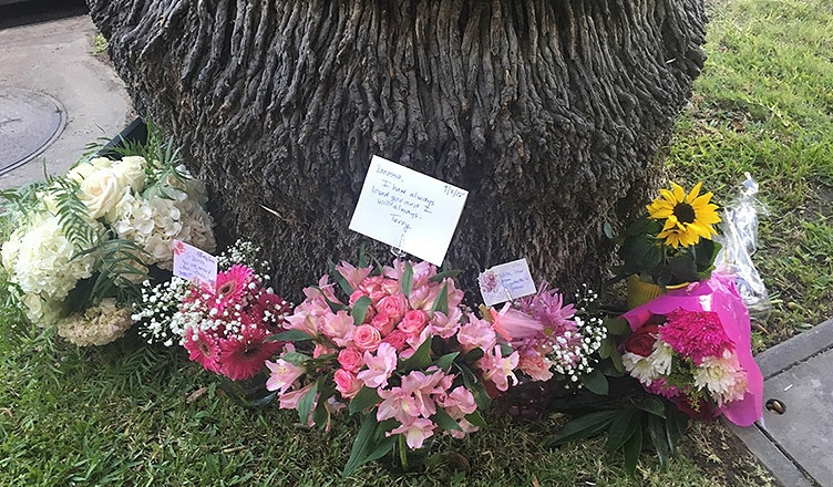 Flowers surround a tree near the home where Vanessa Marquez was killed. (Credit: B. Higgs)