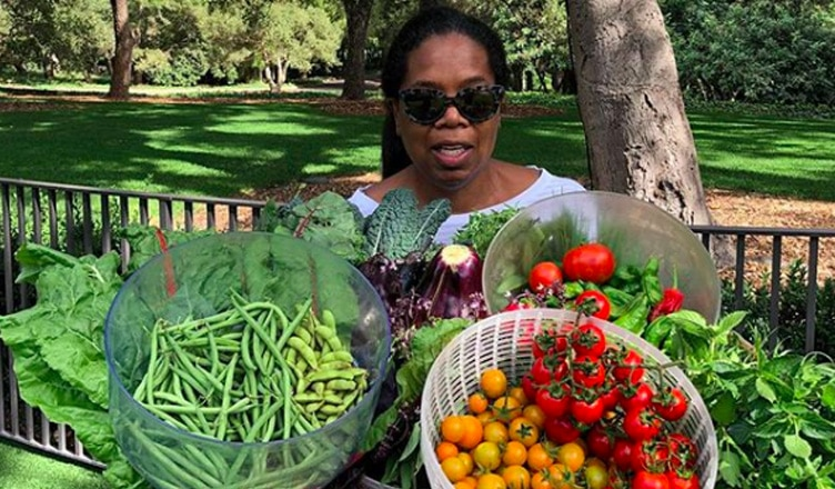 Oprah Winfrey pictured harvesting her personal garden. (Credit: Oprah Winfrey/Instagram)